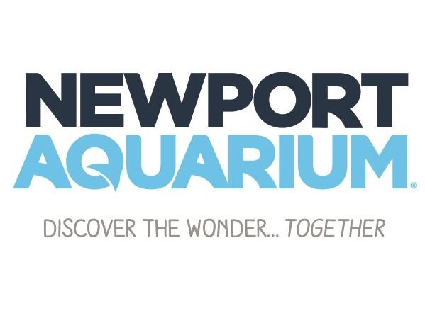 graphic relating to Newport Aquarium Coupons Printable identify Discount codes cincinnati aquarium : Dave and busters printable